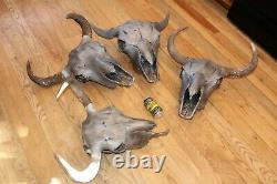4 Bull Bison Buffalo Skull European Mount Taxidermy Western Decor Bone Horn