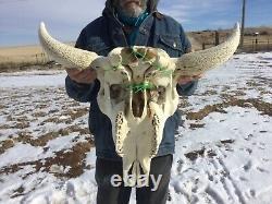 Buffalo Bison Head Skull