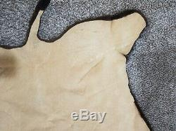 Buffalo, Bison Hide, Taxidermy Tanned Robe (80 x 63)