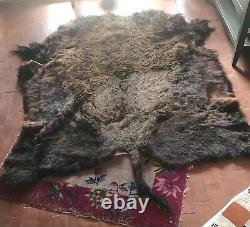 Buffalo bison Hide Robe, thick winter coat, excellent condition