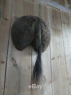 Buffalo bison butt taxidermy mount cape hide skull western saddle hunting art