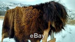 GIANT NEW Wild Montana Yellowstone Park Bison Buffalo Robe Leather Native Antler
