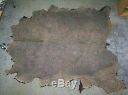 GORGEOUS LARGE BUFFALO / BISON TANNED HIDE / ROBE / RUG TAXIDERMY 93 x 80