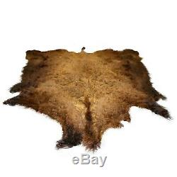 Glacier Wear First Quality Buffalo Bison Robe Hide Rug #1525