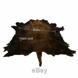 Hair on Bison Rug Tanned Hide New Buffalo Robe 74 x 68
