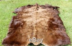 Kansas Bison Buffalo Hide Rug Robe