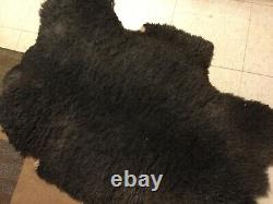 Large 4 x 3 ft Buffalo Bison Hide Montana Fall Soft Tanned Hide Nice Look