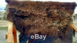 NEW Wild Montana Yellowstone Park Bison Buffalo Robe Hide Leather Native Antler