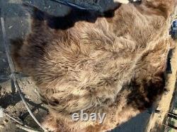 Native lakota Bison Buffalo Robe Hide Leather Native Antler craft tanned fur