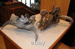 Pair Bull Bison Buffalo Skull European Mount Taxidermy Western Decor Bone Horn
