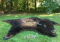 Real Authentic Buffalo/Bison Rug Hide with Head and Hooves/ Native American Made