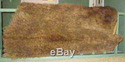 Vintage American Bison Tanned Hide Rug, Large Winter Coat, Taxidermy